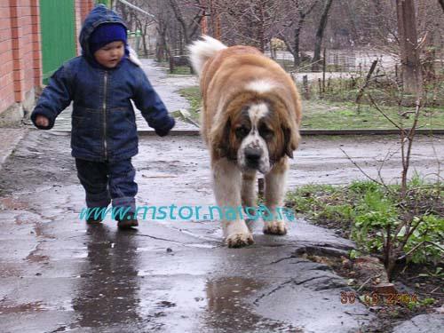 Бавария Донская - д/р ??.??.?? (Ростов-на-Дону) Photo132_m1